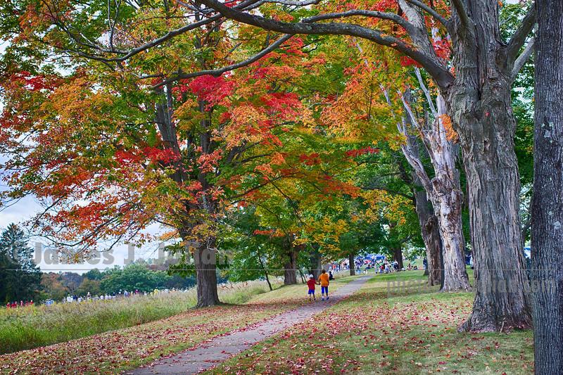 Very Early Fall 1