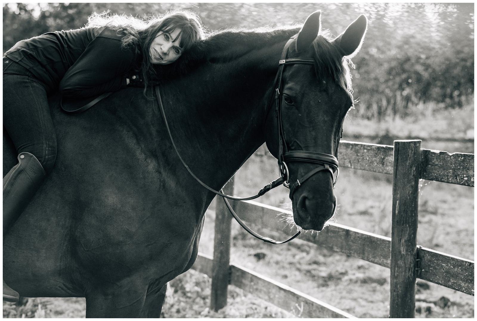 horse portrait pose
