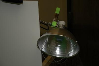 2007-10-22 SBX Lighting