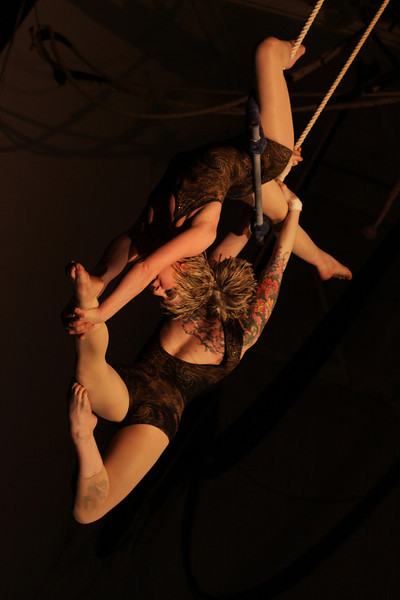 Dance, Sport and Circus Arts