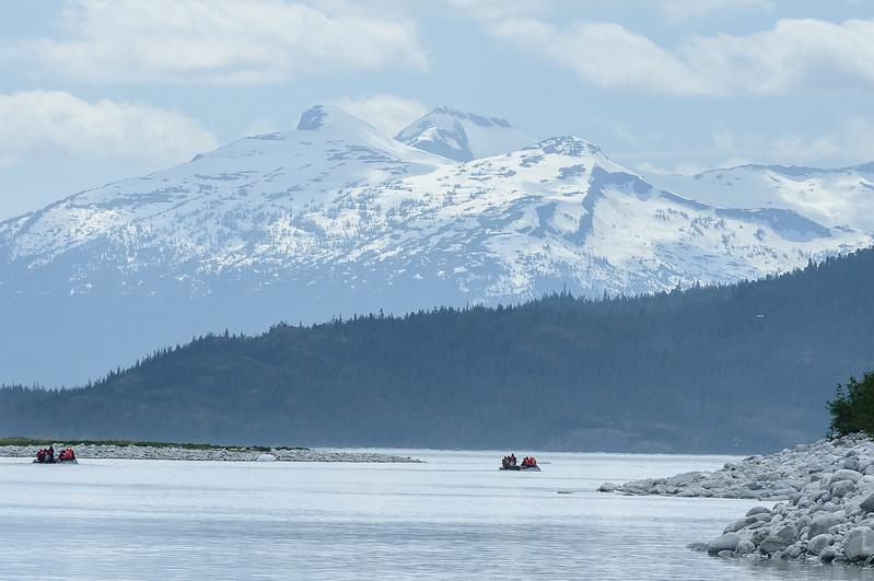 20170524-Alaska-00204.jpg