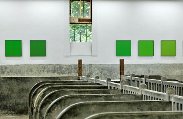 """Galerie de la Ferme du Chateau de Chaumont - Expo """"De vert en vert"""" de Daniel Walravens"""