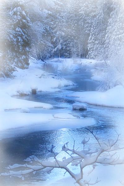 snow scene 7.jpg