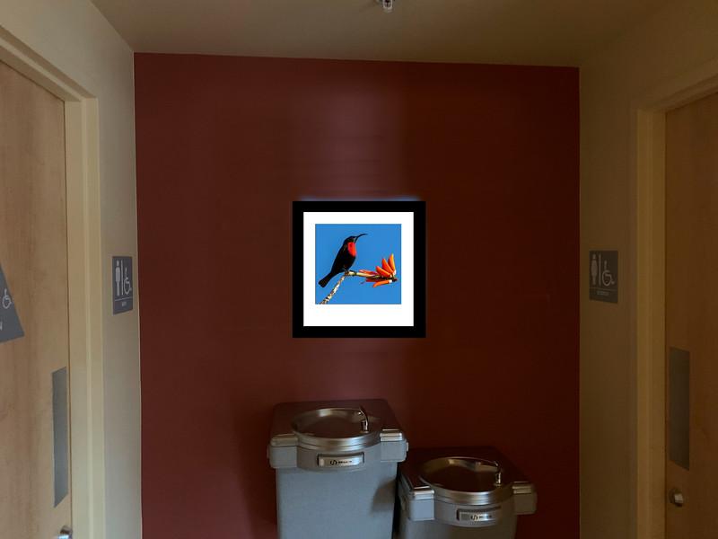 22__ 3 Hallway Walls 011--IMG_2572 copy copy.jpg