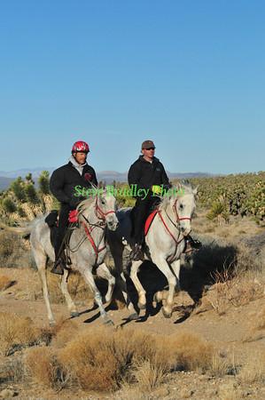 Eastern Mojave Scenic D2