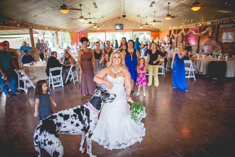 2014 09 14 Waddle Wedding - Reception-712.jpg