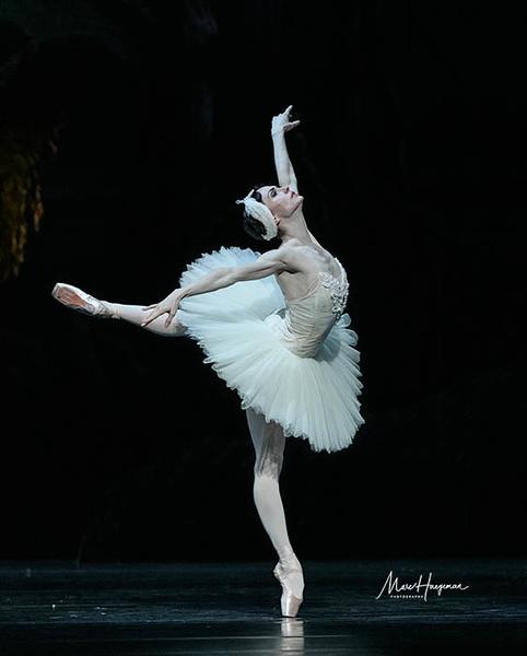 Swan Lake - Het Nationale Ballet, 2019