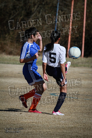 North Davie vs Lexington 3-13-14