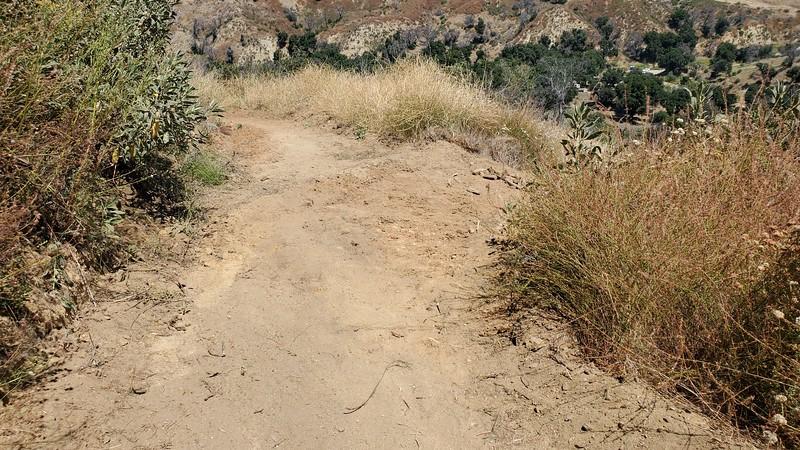 20190810062-Los Pinetos trailwork.jpg