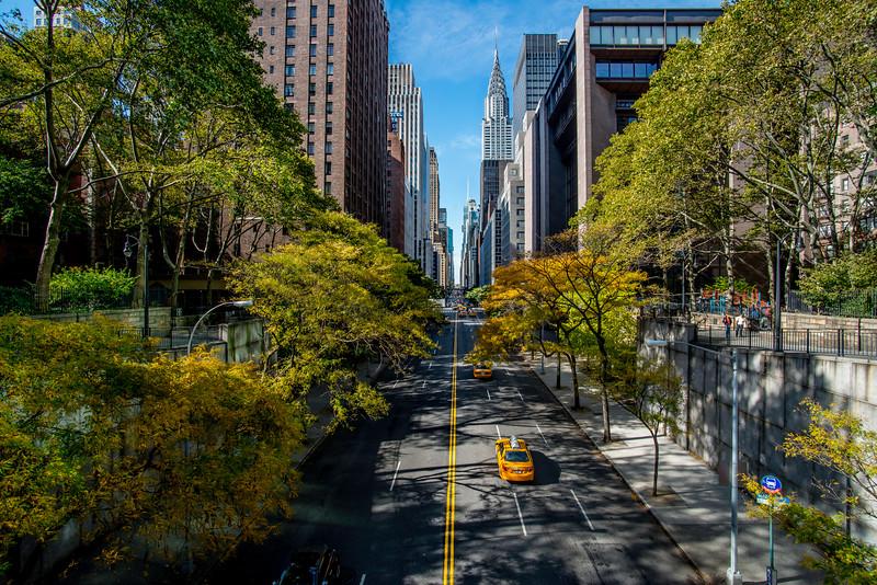 NY-Fall-2013-1.jpg