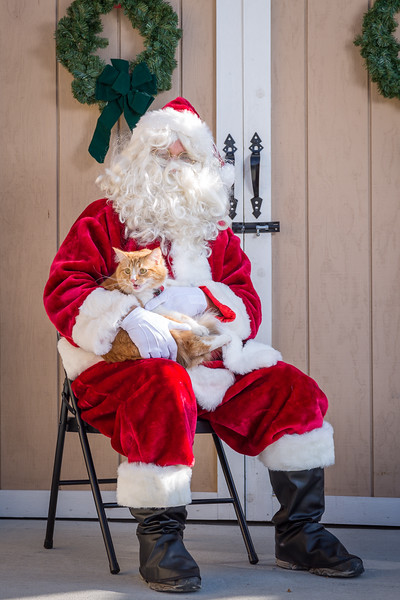 Pet Pictures With Santa-40.jpg