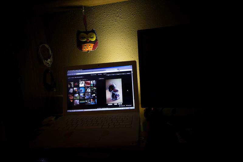 09/13/2012 - Shelf Owl