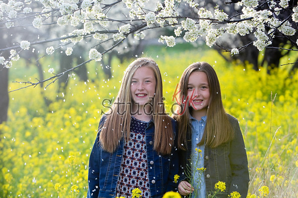 wild sisters 2016