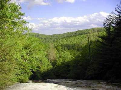 4 View-from-the-Top-N-Harper-Crk-Falls.jpg