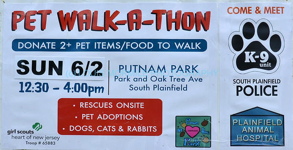 PAWS IN THE PARK-PET WALK-A-THON  6-2-2013 SO. PLAINFIELD.NJ
