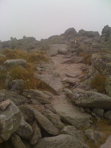 Trail at Mt Washington