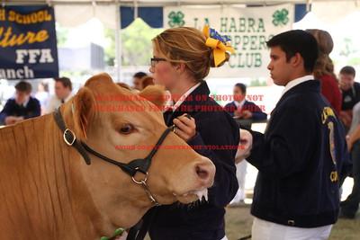 2014 LHVCF Beef