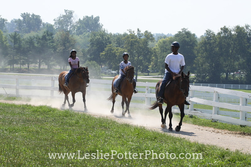 August 2010 Mustang Troop at the Kentucky Horse Park