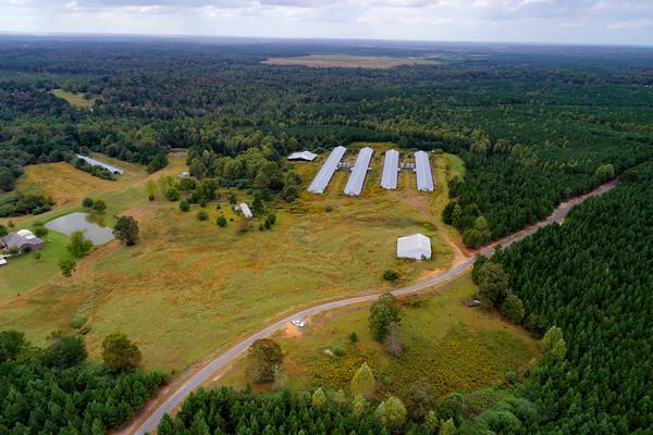 Chicken Farm - Jasper, Alabama