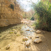 Stones in the Water, Ein Gedi, Israel