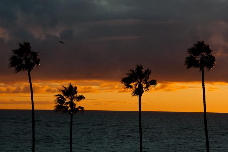 nov20-sunset-2.jpg
