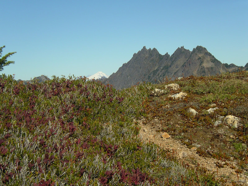 Mt. Baker and the Wilman Peaks.