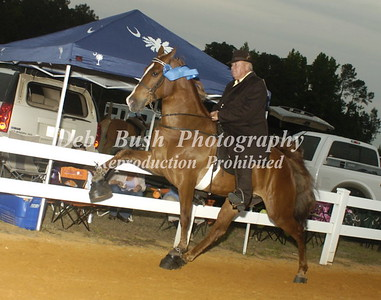 CLASS 31  FOUR YR OLD OPEN SPECIALTY