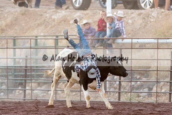 Bull Riding (Friday)