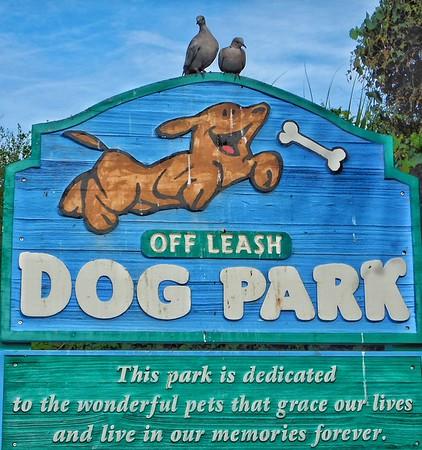 Satellite Beach Dog Park