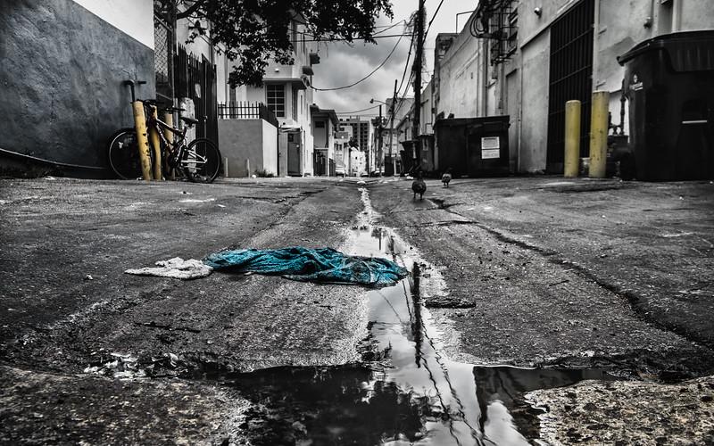 Miami FL - Rag in Alley.jpg