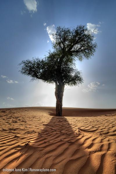Oman-Wahiba Sands--22.jpg