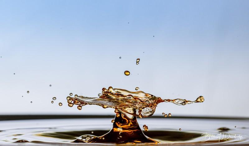 Splash-Art-Orange-1520.jpg
