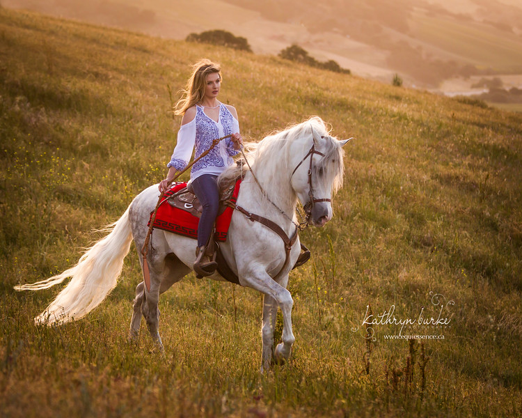 jordan saddle 2016-7811.jpg