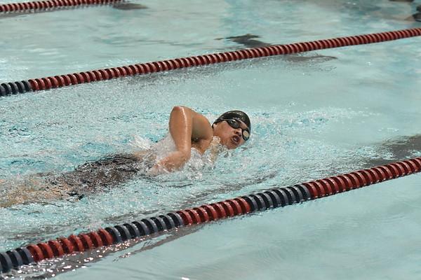 Swimming, North Star Dual