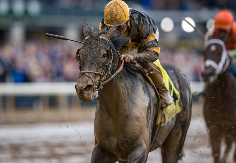 Proschema (Warrior's Reward) wins an Allowance at Keeneland 10.26.19. Jockey: Joel Rosario Trainer: William I. Mott Owner: Ironhorse Racing Stable LLC and Wachtel Stable