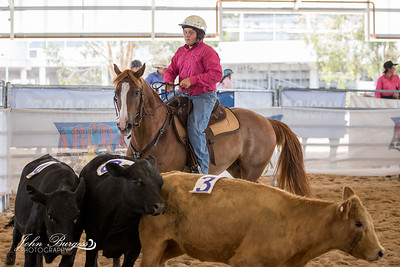 ABCRA National Finals Ranch Sorting - Beginner