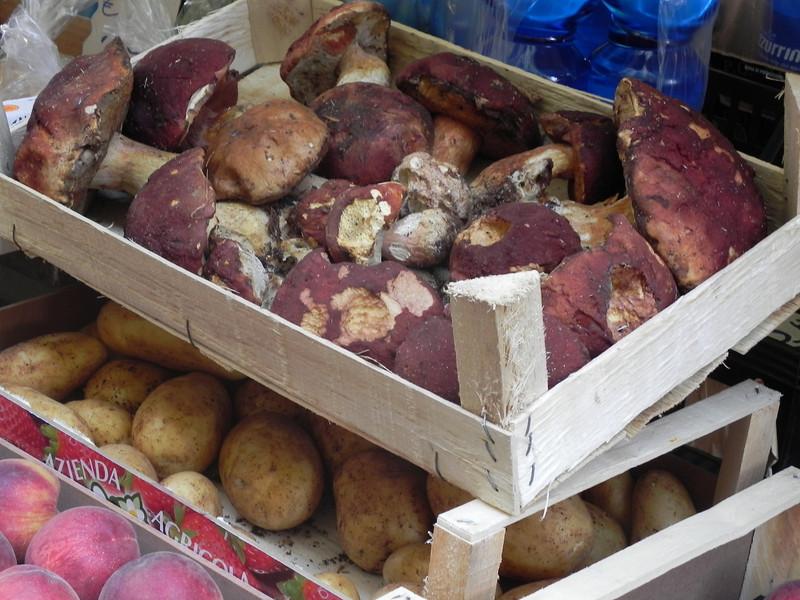 Market in Pia. della Palla 2.jpg