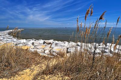 Springtime at Sandy Point