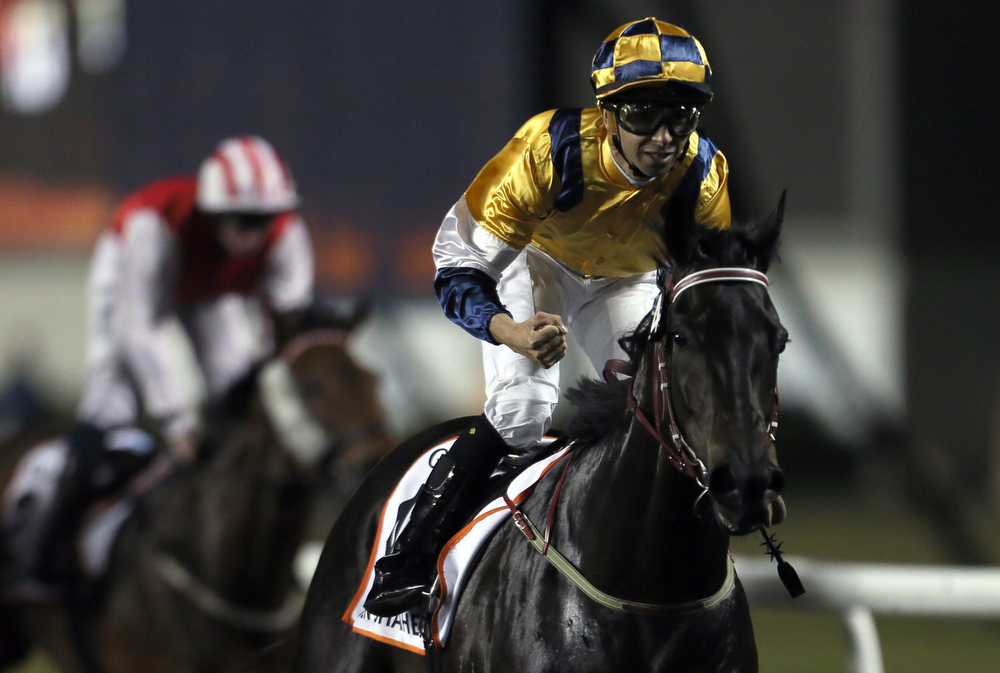 . Brazilian jockey Joao Moreira celebrates after winning the Dubai Golden Shaheen race on the horse Sterling City during the Dubai World Cup at the Meydan race track in the Gulf Emirate on March 29, 2014. A cosmopolitan gathering of horses from seven different countries contest the US$10 million Emirates Dubai World Cup. (KARIM SAHIB/AFP/Getty Images)