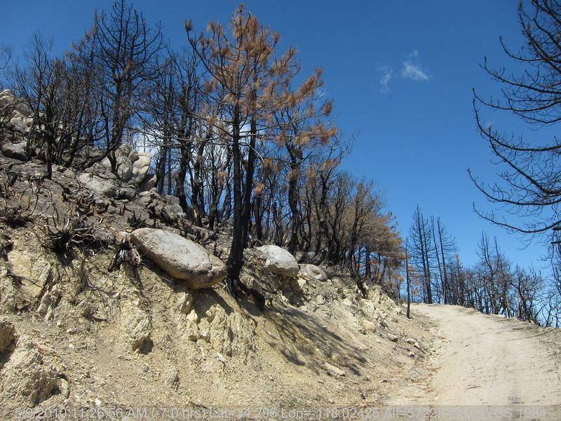 20100509047-Trail Recon, Vetter Mountain.JPG