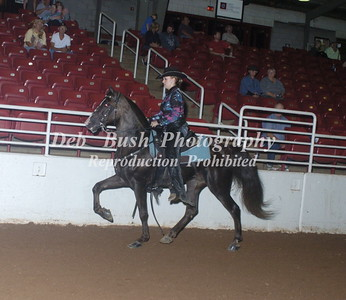 CLASS 64 JUV COUNTRY SADDLE