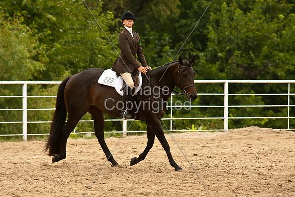 10-12 English Equitation