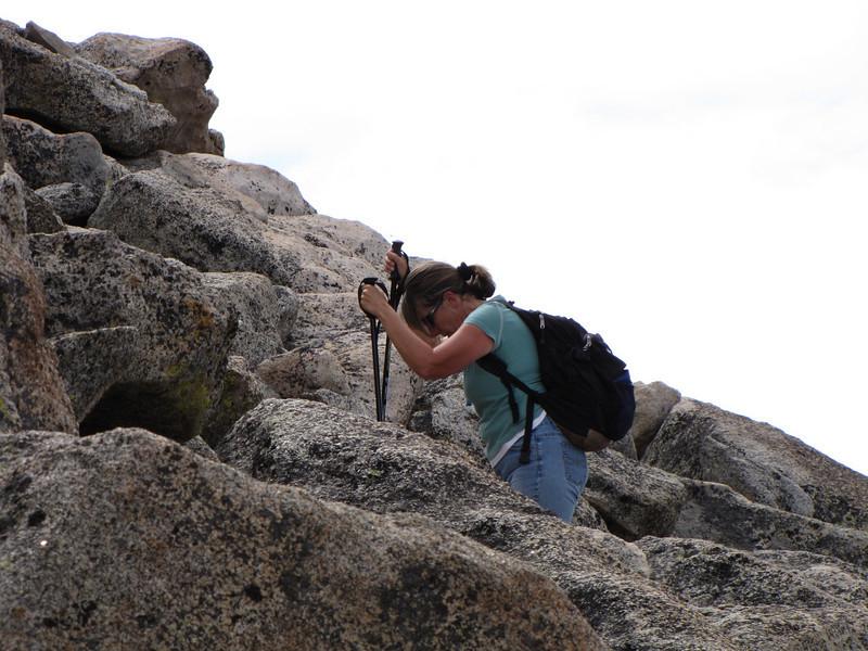 Mt Evans 7-25-2010 (213).jpg