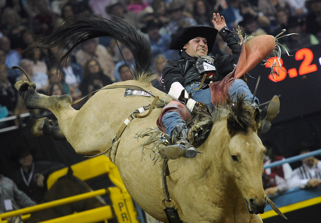 . Jessy Davis of Power, Mont. competes in the bareback riding during the third go-round of the Wrangler National Finals Rodeo on Saturday, Dec. 6, 2014, in Las Vegas. (AP Photo/Las Vegas Review Journal, David Becker)
