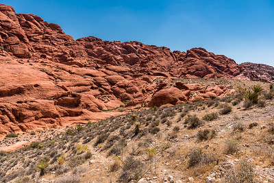 Red Rock Canyon_3338