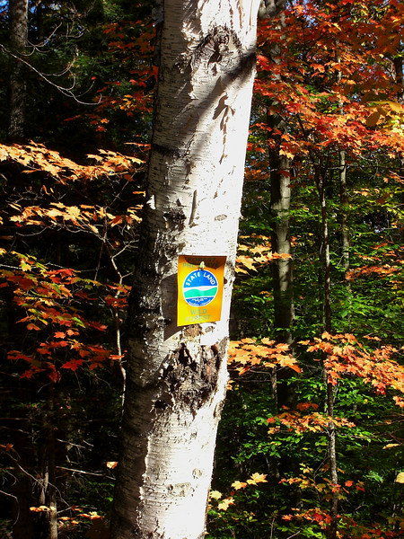 Forest Home Rd, oct 4, 2007  - State Land /Forest Preserve