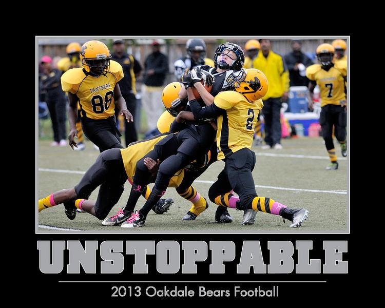 Oakdale Bears 2013 Posters