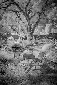 Ruth Bancroft Garden