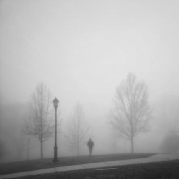 Snapseed-6.jpg