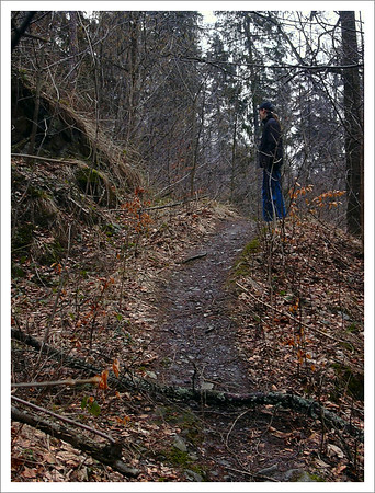 Údolím Bystřice